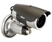 Видеонаблюдение и сигнализация - установка,  обслуживание,  ремонт.
