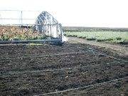 Участок 23 га,  чернозем,  цветоводство,  поливные поля,  парники Донецкая