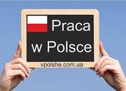 Официальное трудоустройство в Польше!