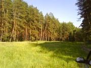 Сдам домик  ГОЛУБЫЕ ОЗЕРА,  отдых Щурово,  С детьми в сосновый лес