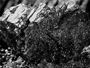 Куплю уголь