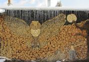 Продам дрова твердых и мягких сортов деревьев