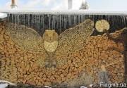 Продаю дрова различных сортов дерева