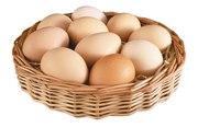 Яйцо куриное от производителя по доступным ценам !