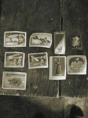 колекціоні марки