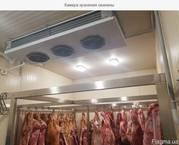 Камера охлаждения и хранения  свинины